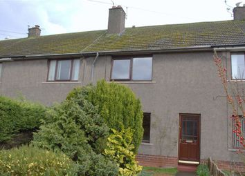 Thumbnail 2 bed terraced house to rent in West Field Road, Berwick-Upon-Tweed