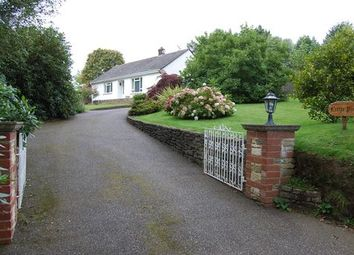 Thumbnail 2 bedroom detached bungalow to rent in Toadpit Lane, West Hill, Ottery St Mary, Devon