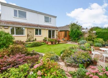 Thumbnail 4 bed bungalow for sale in Smardon Avenue, Brixham