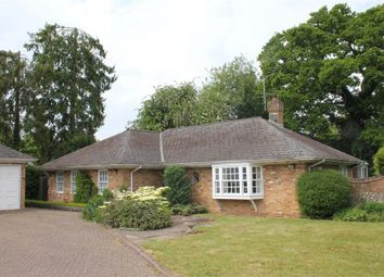 Thumbnail 4 bed detached bungalow for sale in Tall Oaks, Amersham, Buckinghamshire