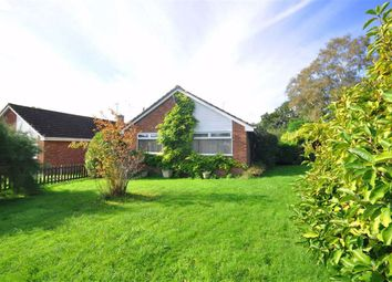 Thumbnail 3 bed bungalow for sale in The Beagles, Cashes Green, Stroud