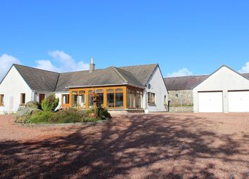 Thumbnail 4 bed bungalow to rent in West Linton
