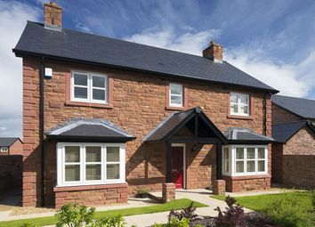 Thumbnail 4 bedroom detached house to rent in Blackpool Road, Kirkham, Preston