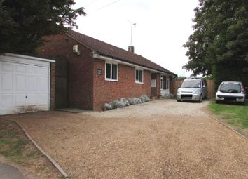 Thumbnail 3 bed detached bungalow to rent in Woodside Road, Slip End, Luton