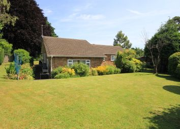 Thumbnail 4 bed detached bungalow to rent in Main Road, Walters Ash, High Wycombe