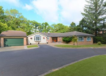 4 bed detached bungalow for sale in Fernhill Lane, New Milton BH25