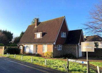 Thumbnail 3 bedroom detached house for sale in The Droveway, Hove, East Sussex