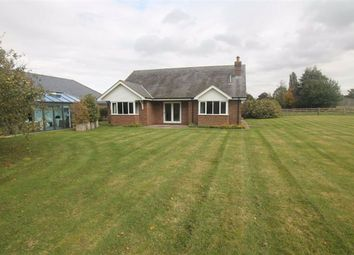 Thumbnail 2 bed detached bungalow to rent in Bedford Road, Little Houghton, Northampton
