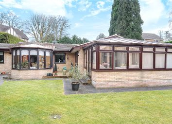 Thumbnail 4 bed detached bungalow for sale in Stonehill Road, Headley Down, Bordon