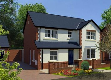 Thumbnail 4 bed detached house for sale in Birch Grove, Gloucester Road, Chepstow, Gloucestershire