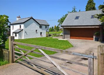 Thumbnail 4 bedroom detached house for sale in Payhembury, Honiton, Devon