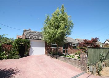 Thumbnail 3 bed bungalow for sale in The Avenue, Trimley St. Mary, Felixstowe
