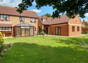 Thumbnail 4 bed detached house for sale in Wilsthorpe, Stamford, Lincolnshire