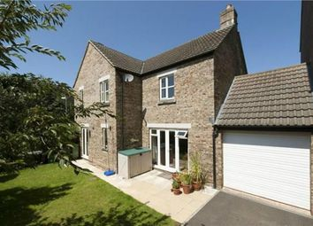 Thumbnail 3 bed detached house to rent in Geoffrey Farrant Walk, Taunton, Somerset
