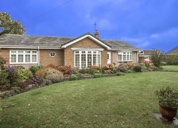 Thumbnail 3 bed bungalow for sale in North Farm, Nedderton Village, Bedlington