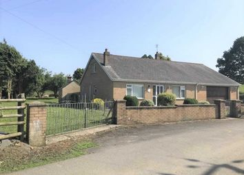 Thumbnail 2 bed detached bungalow for sale in Castell Ddu Road, Swansea