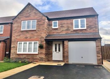 Thumbnail 4 bed property to rent in Wisteria Drive, Nottingham