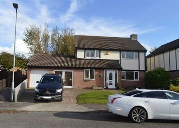 Thumbnail 4 bed detached house for sale in Highmead Avenue, Newton, Newton