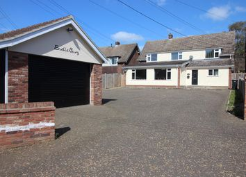 Thumbnail 4 bedroom detached house for sale in Bungay Road, Scole, Diss