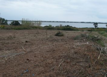 Thumbnail Land for sale in Chalikounas, Agios Mattheos, Corfu, Ionian Islands, Greece