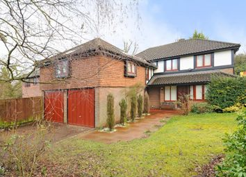 Thumbnail 5 bed detached house to rent in Ascot, Berkshire
