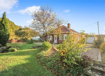 Thumbnail 3 bed detached bungalow for sale in Norwich Road, Poringland, Norwich, Norfolk
