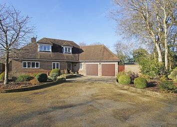 Thumbnail 4 bed bungalow for sale in Shermanbury Grange, Brighton, Horsham, West Sussex