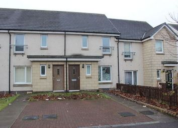 Thumbnail 2 bed terraced house for sale in Belvidere Avenue, Parkhead