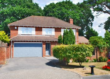 Thumbnail 4 bed detached house to rent in Lymington, Hampshire
