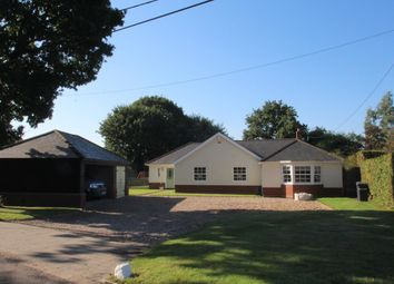 Thumbnail Bungalow for sale in Lodge Lane, Langham, Colchester