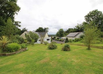 Thumbnail 7 bed detached bungalow for sale in Newton St. Petrock, Holsworthy