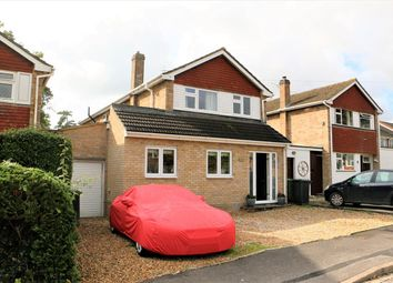 Thumbnail 4 bed detached house to rent in Lingfield Close, Old Basing, Basingstoke