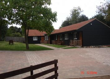 Thumbnail 3 bed bungalow to rent in Great Yeldham, Halstead