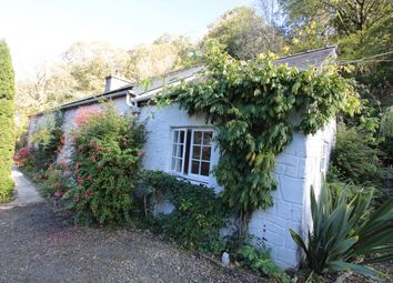Thumbnail 3 bed cottage for sale in Gilfachrheda, New Quay
