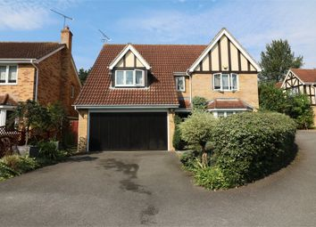 Thumbnail 4 bed detached house to rent in Mylne Close, Cheshunt, West Cheshunt, Hertfordshire