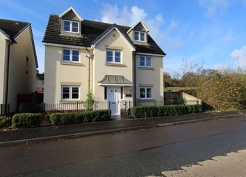 Thumbnail 4 bed detached house for sale in Clos Y Wern, Hendy, Swansea