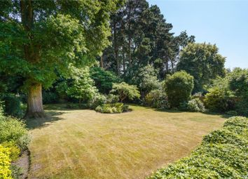 Thumbnail 5 bed detached house for sale in Southfield Place, Weybridge, Surrey
