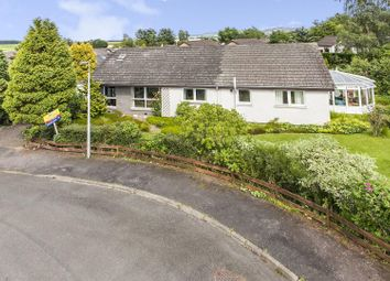 Thumbnail 5 bed detached bungalow for sale in Fraser Avenue, Wolfhill, Perth