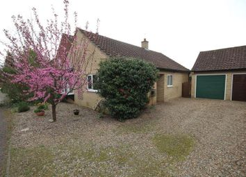 Thumbnail 2 bedroom detached bungalow to rent in Irwin Close, Reepham, Norwich