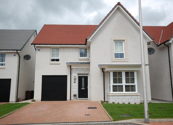 Thumbnail 4 bed detached house to rent in Garthdee Farm Gardens, 7Gf