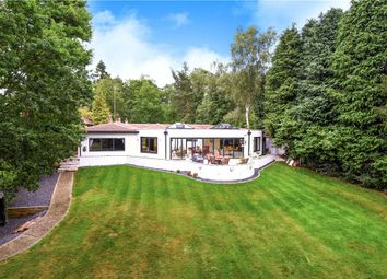 Thumbnail 5 bedroom detached bungalow for sale in Hollybush Ride, Finchampstead, Wokingham