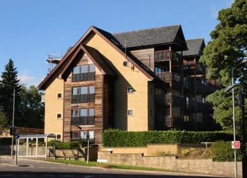 Thumbnail 4 bed flat to rent in 20 Knowle Lane, Sheffield