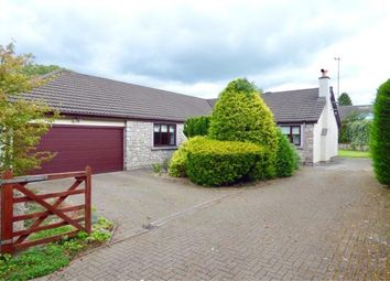 Thumbnail 4 bed detached bungalow for sale in The Ashes, Spring Bank, Silverdale, Carnforth