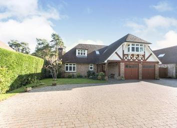 Thumbnail 4 bed detached house for sale in Ashley Heath, Ringwood, Hampshire