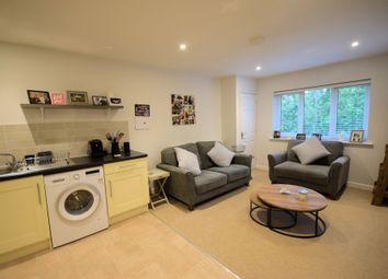 Thumbnail 2 bed flat to rent in Thamesdale, London Colney