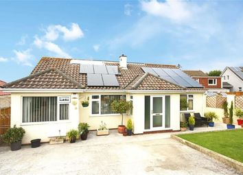 Thumbnail 3 bed detached bungalow for sale in St Mary's Close, St Mary's, Brixham