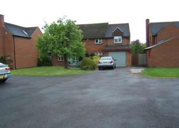 Thumbnail 5 bed detached house to rent in Main Road, Shurdington, Cheltenham