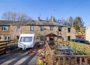 Thumbnail 4 bed terraced house for sale in Millfield Place, East Ord, Berwick-Upon-Tweed