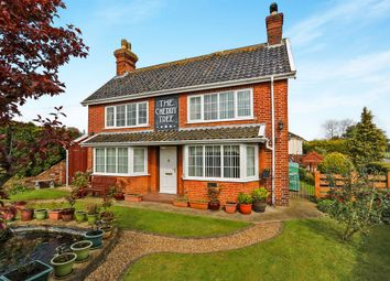 Thumbnail 4 bed detached house for sale in The Green, North Lopham, Diss