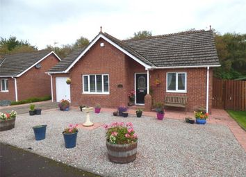 Thumbnail 2 bed detached bungalow for sale in Woodgrove Road, Dumfries